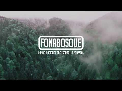 Institucional FONABOSQUE